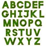 Alfabeto verde Fotos de archivo