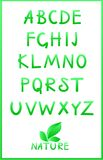 Alfabeto verde. Conjunto del vector Fotografía de archivo libre de regalías