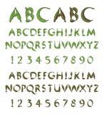 Alfabeto verde dai fogli Fotografia Stock