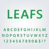 Alfabeto verde del foglio Fotografie Stock Libere da Diritti