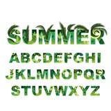 Alfabeto verde del verano, letras tropicales del vector capital stock de ilustración