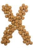 Alfabeto X de la tuerca del jengibre Foto de archivo