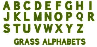 alfabetos de la hierba 3D Imagen de archivo libre de regalías