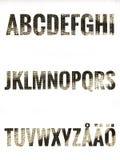 Alfabetuppsättning med skandinaviska bokstäver Vektor Illustrationer