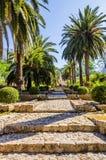 Alfabia arbeta i trädgården i Mallorca Arkivfoto