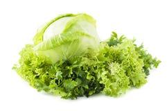 Alface, &parsley do repolho imagem de stock royalty free