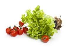 Alface com tomates em um fundo branco Imagem de Stock Royalty Free
