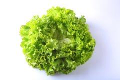 Alface de legumes frescos, de alho e de folha Isolado no fundo branco Foco seletivo Imagens de Stock