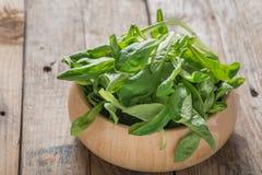 Alface de Mache, salada de milho, erva-benta Foto de Stock