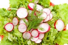 Alface e radishes desbastados Fotos de Stock