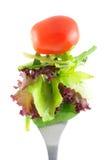 Alface e tomate na forquilha Imagens de Stock