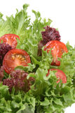Alface e tomates Fotografia de Stock
