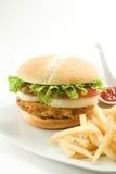 Alface torrada do queijo da cebola do tomate do hamburguer da galinha Imagens de Stock Royalty Free