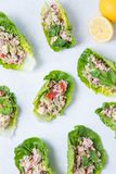 Alface Tuna Wrap foto de stock royalty free