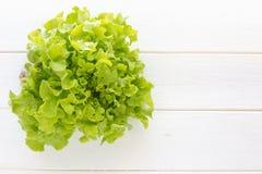 Alface verde do carvalho fresca na tabela de madeira branca & x28; lettuce& x29; Imagem de Stock