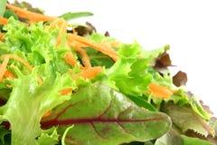 Alfaces misturadas frescas, com cenouras Fotografia de Stock