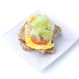 Alfafa egg sandwich Royalty Free Stock Photo