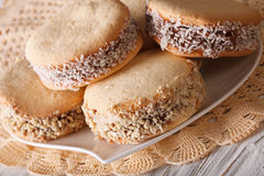 Alfajores Tasty cookies close-up on a plate. horizontal Royalty Free Stock Image