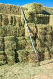 Alfalfa hay bales stacked with pitch fork on farm. Alfalfa hay bales stacked pitch fork farm horses livestock feed country agricultural agriculture farming stock photos