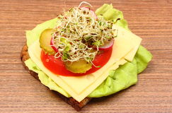 Alfalfa and radish sprouts on spoon and vegetarian sandwich. Alfalfa and radish sprouts on wooden spoon and freshly prepared vegetarian sandwich lying on wooden Royalty Free Stock Photography