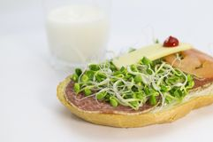 Alfalfa sprouts sandwich Royalty Free Stock Photography