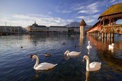 Alfalfa, Suiza, el puente de la capilla Fotos de archivo libres de regalías