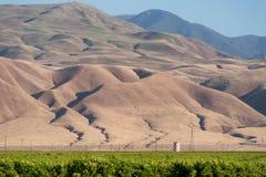 Alfalfalantgårdfält och berg i sydliga Kalifornien Arkivfoto