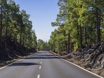 Alfalt路在el teide自然公园在有豪华的岩石的特内里费岛 免版税库存照片