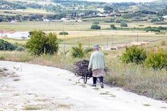 ALFAMBRAS, PORTUGAL - 25. MAI 2014: Erfassung des Brennholzes für makin Lizenzfreies Stockfoto