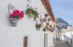 Alfarnatejo, vila branca acima no monte de montanhas de Malaga, Espanha townhouses foto de stock