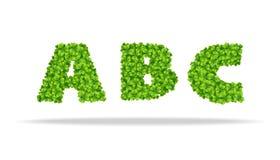 Alfavit von den Blättern des Klees Buchstaben ABC Stockfotos