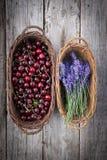 Alfazema e cerejas frescas fotografia de stock