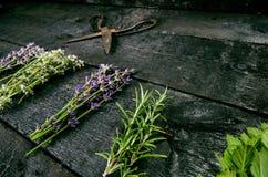 A alfazema floresce, alecrins, hortelã, tomilho, melissa com tesouras velhas em uma tabela de madeira preta Madeira queimada Term imagem de stock royalty free
