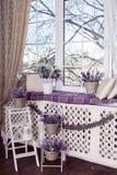 A alfazema floresce nos potenciômetros brancos, em cestas de vime e no suporte pequeno da bicicleta na escada de madeira fotografia de stock royalty free