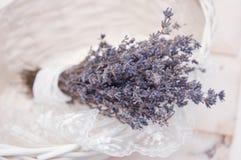 A alfazema floresce o ramalhete Foto de Stock Royalty Free