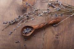 Alfazema secada Imagem de Stock