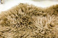 alfombra Fotografía de archivo libre de regalías