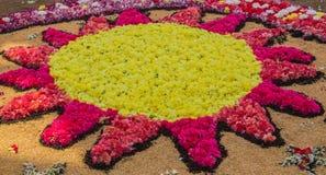 Alfombra Corpus Christi de la flor Foto de archivo
