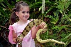 Alfombra costera Python del australiano Foto de archivo libre de regalías