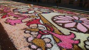 Alfombra de flores, Genzano di Roma junio de 2018 almacen de metraje de vídeo