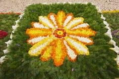 Alfombra de la flor fotos de archivo