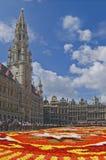 Alfombra de la flor en Bruselas Foto de archivo libre de regalías