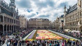 Alfombra 2016 de la flor en Bruselas Imagen de archivo