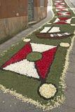 Alfombra de la flor, Galicia, España Imagen de archivo libre de regalías