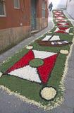 Alfombra de la flor, Galicia, España Fotos de archivo libres de regalías