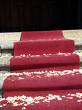 Alfombra roja - final de la boda Imagen de archivo
