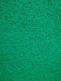 Alfombra verde de la trampa del polvo del vinilo Imágenes de archivo libres de regalías