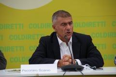 Alfonso Pecoraro Scanio Στοκ φωτογραφία με δικαίωμα ελεύθερης χρήσης