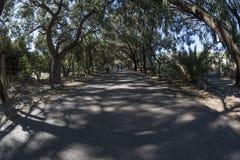 Alfonso XIII Park, Guardamar del Segura, Alicante, 26 Maart, 201 Royalty-vrije Stock Afbeeldingen