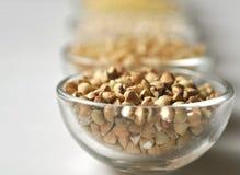 Alforfón - grano Gluten-libre en el fondo blanco Imágenes de archivo libres de regalías